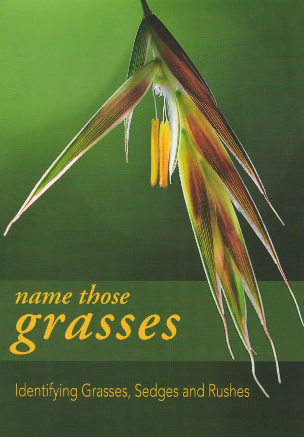 Name Those Grasses