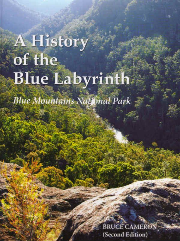 History of the Blue Labyrinth
