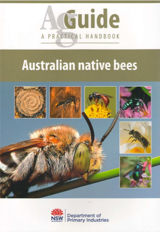 Australian Native Bees