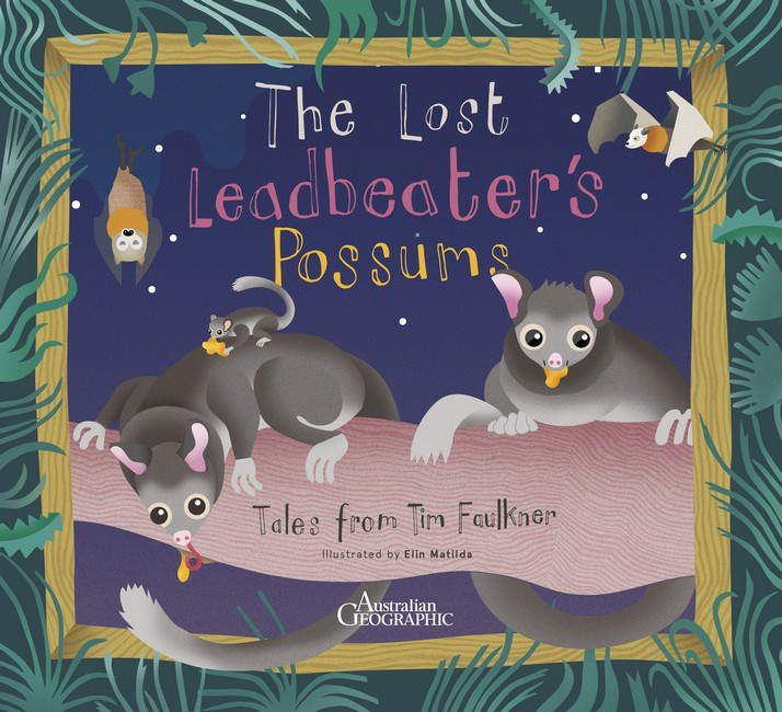 The Lost Leadbeaters Possum