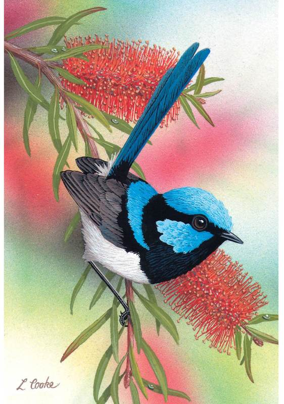 Card Blue Wren and Bottlebrush
