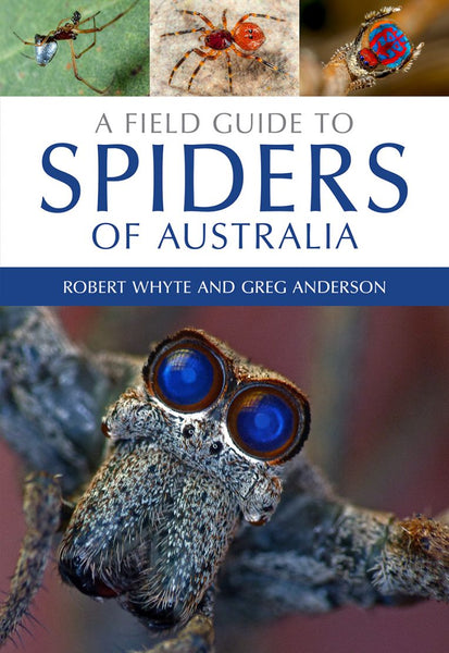 Field Guide to Australian Spiders