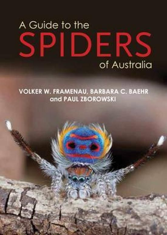 A Guide to Spiders of Australia