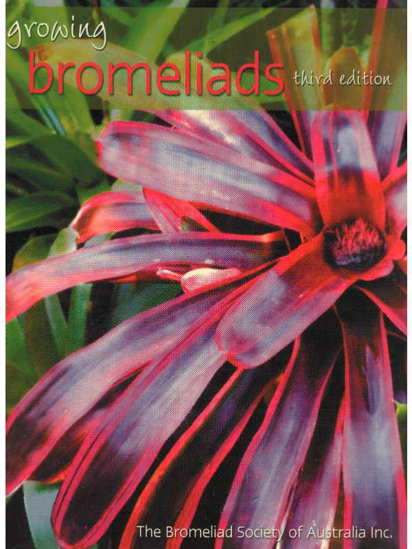 Growing Bromeliads