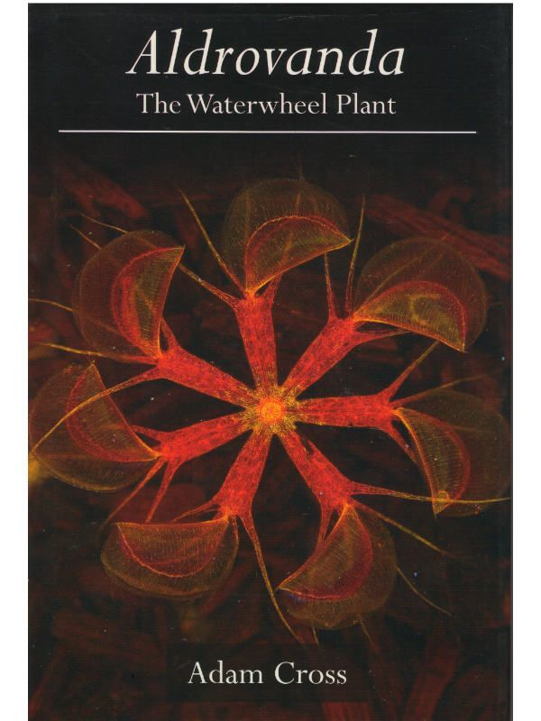 Aldrovandra the Waterwheel Plant