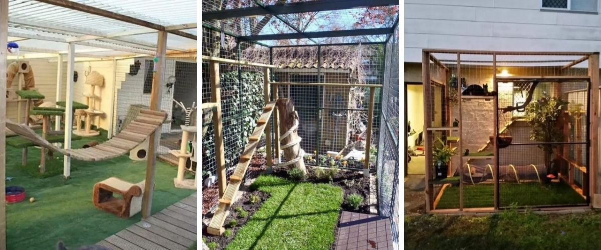 Catio ideas for your Cat