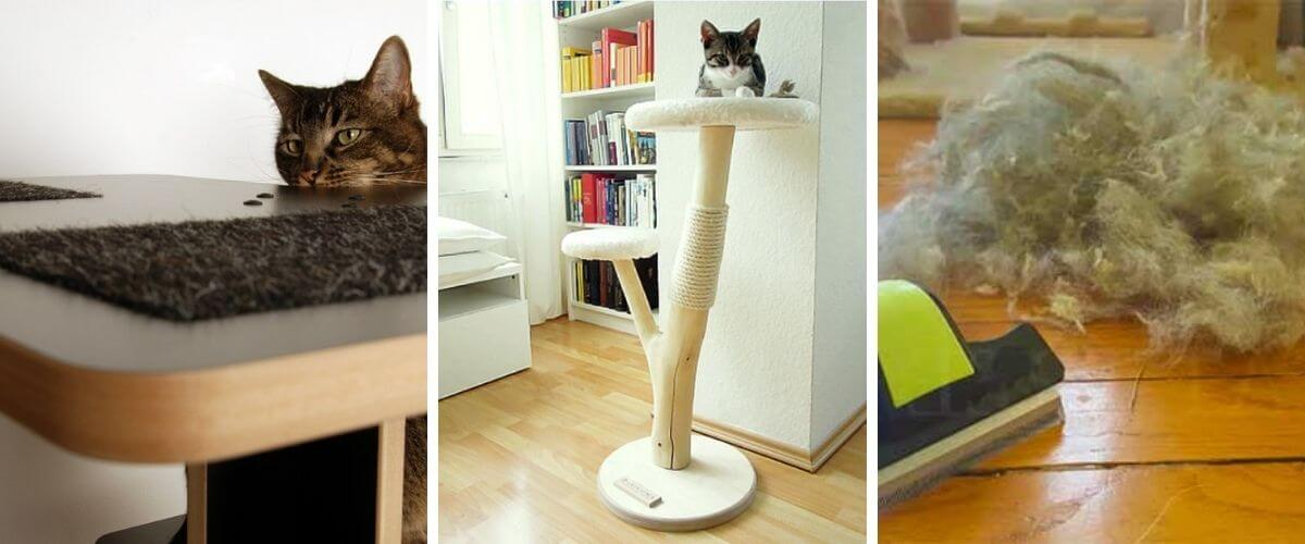 How-to-clean-a-cat-tree