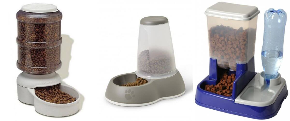 help-your-cat-lose-weight-using-automatic-feeder