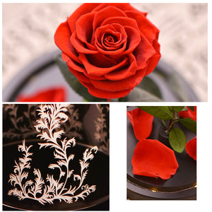 Eternal Red Rose Flower In Glass Dome with LED Light Lamp