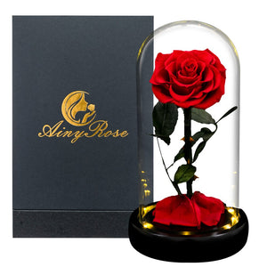 Eternal Roses Flower In A Glass Dome Valentine Christmas Gift