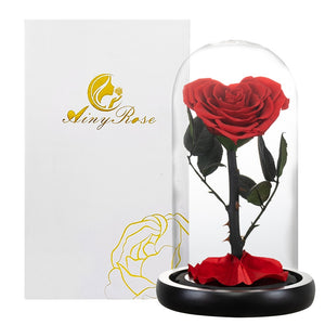 Heart Shaped Preserved Rose Artificial Flower In A Glass Dome Valentine Christmas Gift