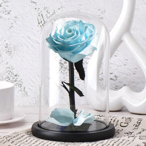 Seasonal & Holiday Decorations - Eternal Roses Flower In A Glass Dome Valentine Christmas Gift
