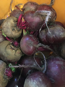 BEETROOT (our own spray free)