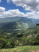 Comayagua Honduras Mountain Coffee volcanic fertile region