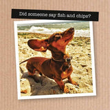 Thank Heavens for Dogs Cards - The Leprosy Mission Australia Shop