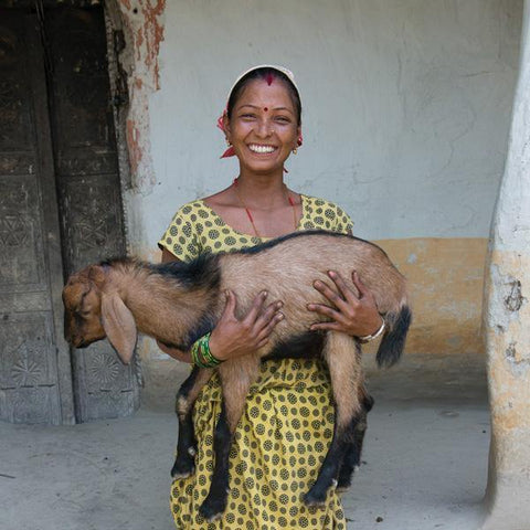 Gift of Love - Goat* - The Leprosy Mission Australia Shop