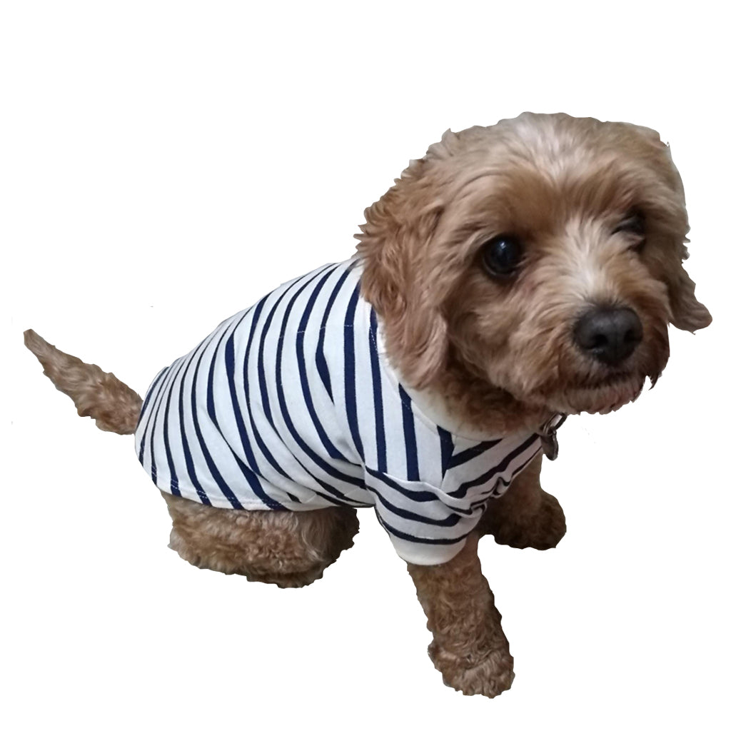 Dog Breton T-Shirt GOTS Certified Organic Cotton | Golden Monkey - Golden Monkey