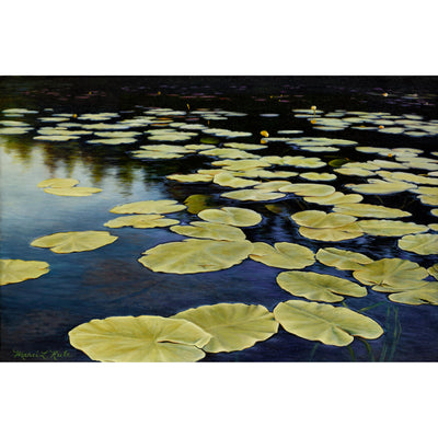 Lily Pads - Original Oil Painting