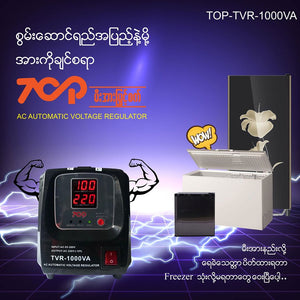 Treasure Regulator TVR1000VA