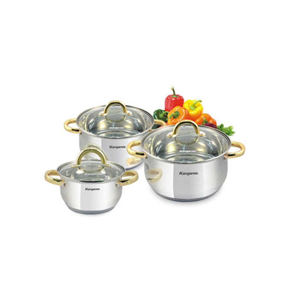 Kangaroo Induction Stockpot KG161M