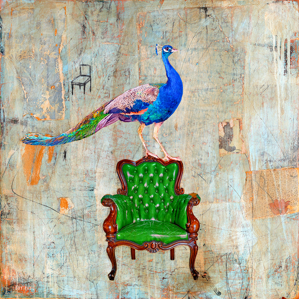 Peacock in the Hot Seat