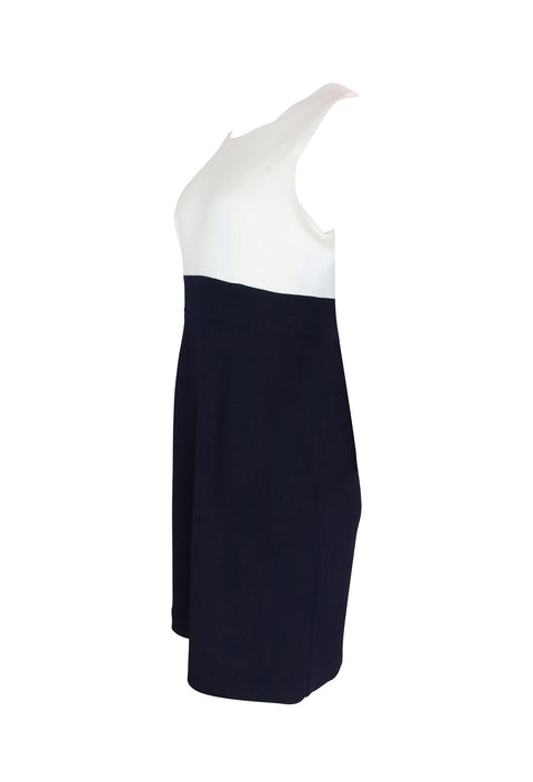 Blue and White Sheath Dress