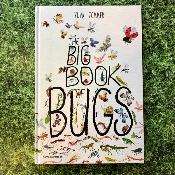 The Big Book Of Bugs