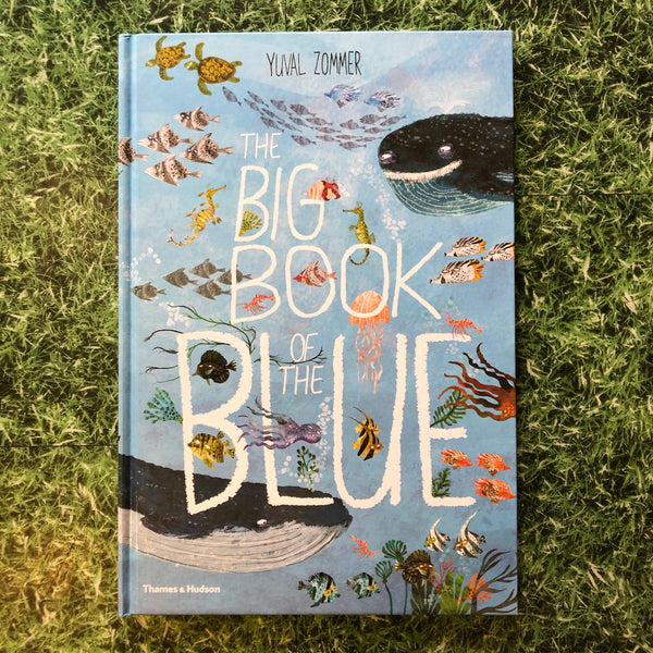 The Big Book Of Blue