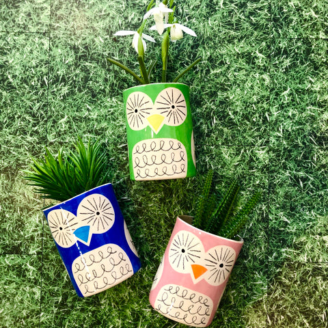 Ken Eardley Small Owl Vases