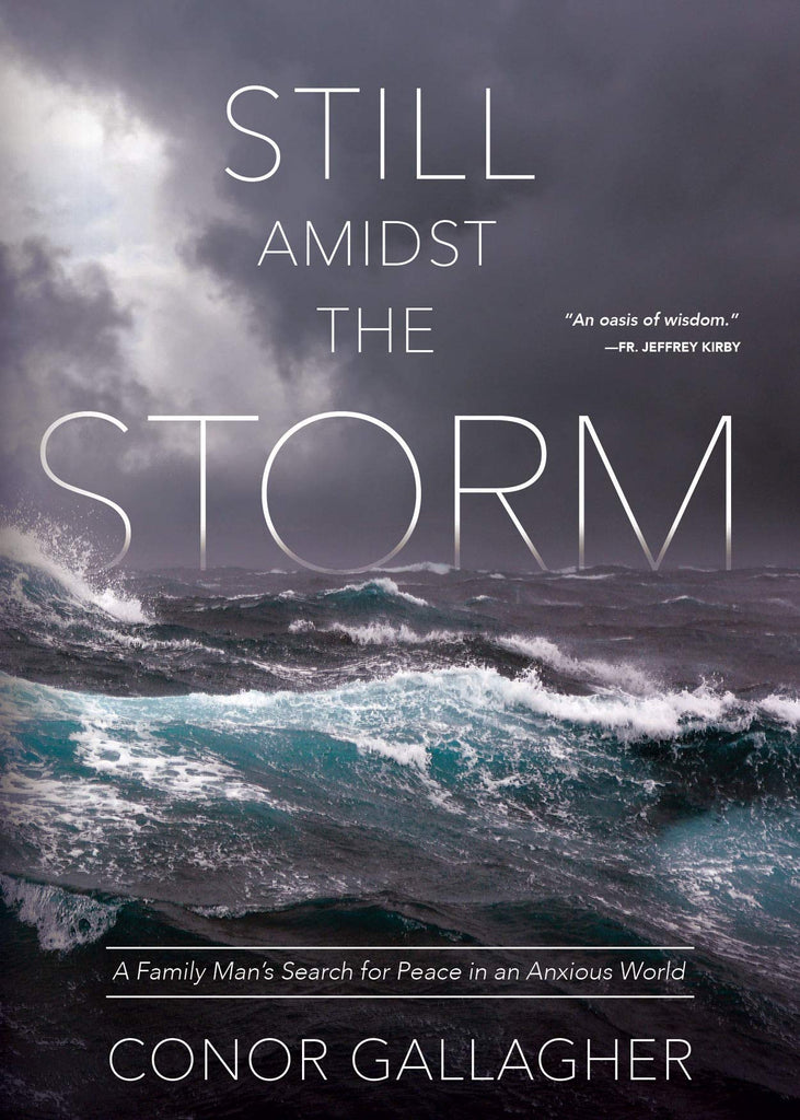 Still Amidst the Storm - A Family Man's Search for Peace in an Anxious World