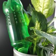 Load image into Gallery viewer, House Plant Watering Spikes, Self-Watering Using a Water Bottle