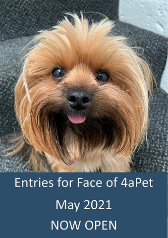 Entries for face of 4aPet May 2021