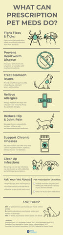 How Can Prescription Pet Medications Help Your Pet?