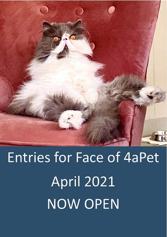 Entries now open for Face of 4aPet April 2021