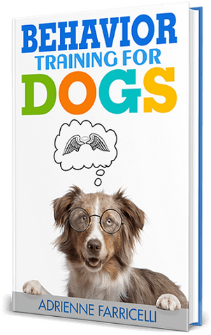 BRAIN TRAINING FOR DOGS – UNIQUE DOG TRAINING COURSE