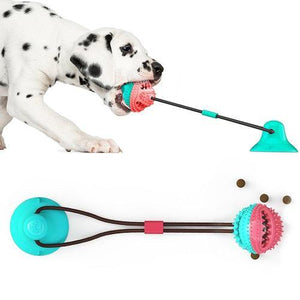 A Dalmatian dog pulling at a dog toy. The you has a suction cup placed on the floor.