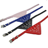 Small Pet Collar with Bandanna - ASSORTED COLOURS - 4aPet