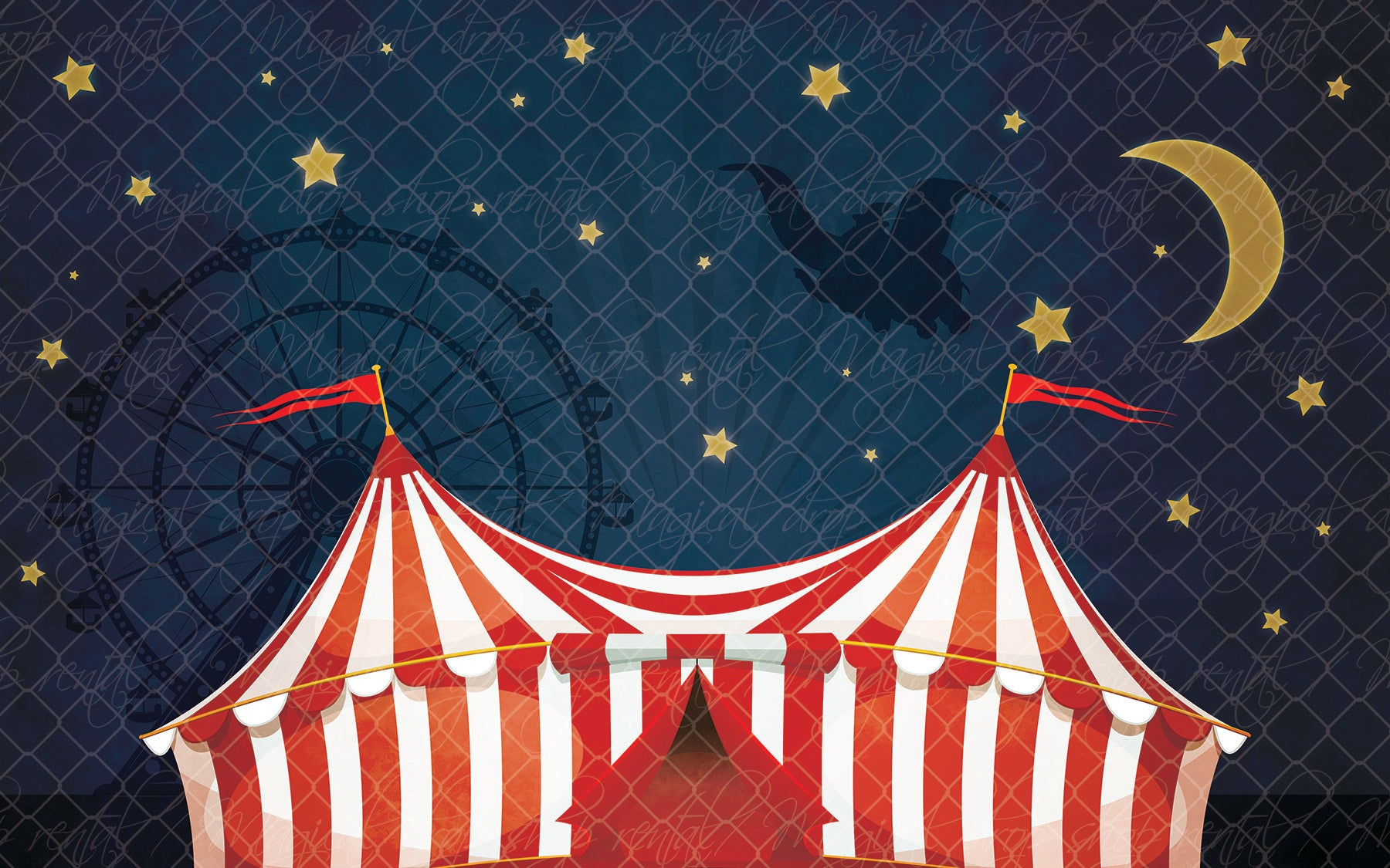 Night at the Circus