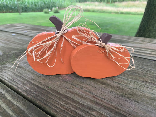 Fall Pumpkin Home Table Centerpiece Accent Decor