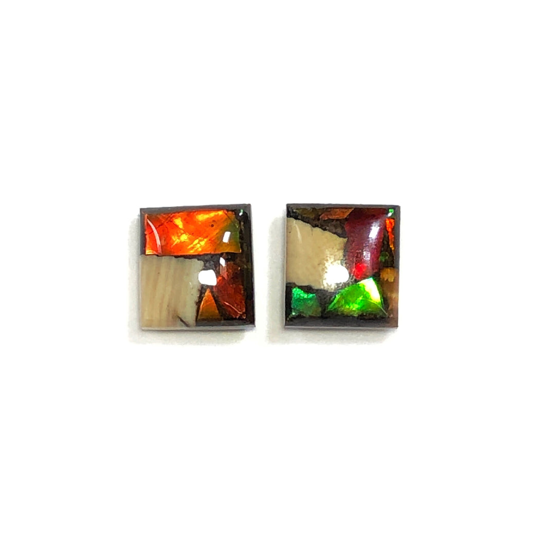 Ammolite and Mammoth ivory stud earrings