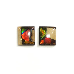 Ammolite and mammoth tusk stud earrings
