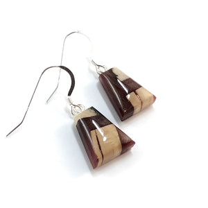 Mammoth_tusk_and_resin_jewelry_Hook_earrings_brown