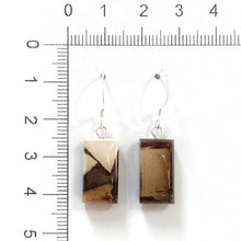 Load image into Gallery viewer, Mammoth_tusk_and_resin_jewelry_Hook_earrings_brown_flare_size