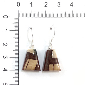 Mammoth_tusk_and_resin_jewelry_Hook_earrings_brown_flare_size
