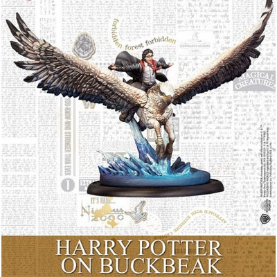 Harry Potter : Harry Potter on Buckbeak