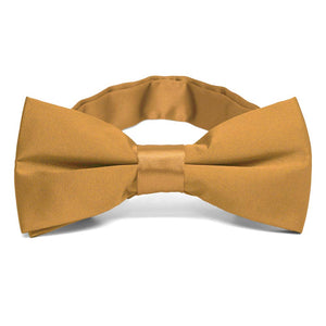 Antique Gold Band Collar Bow Tie