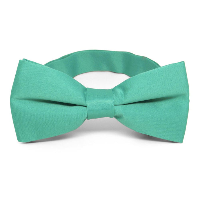 Aquamarine Band Collar Bow Tie