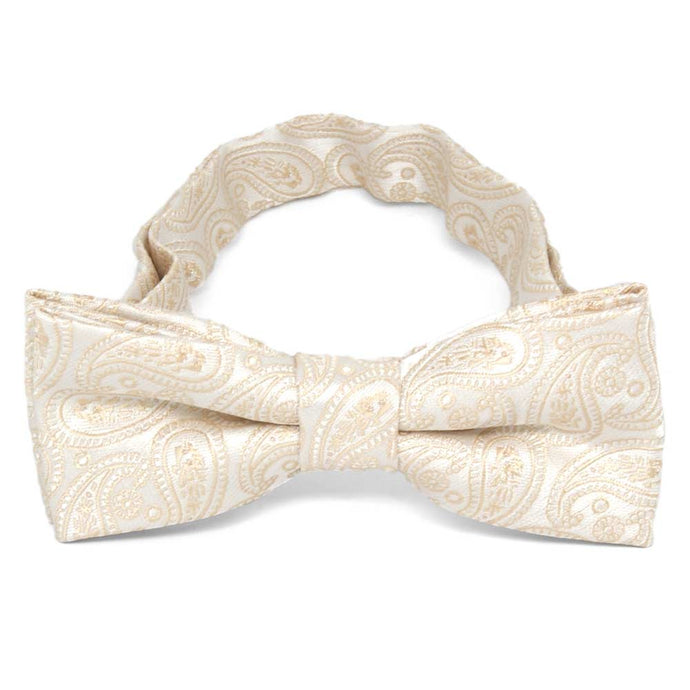 Boys' Wheat Brown Darlene Paisley Bow Tie