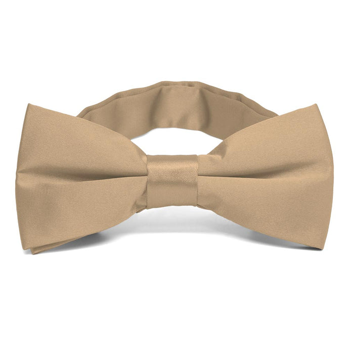 Bronze Band Collar Bow Tie