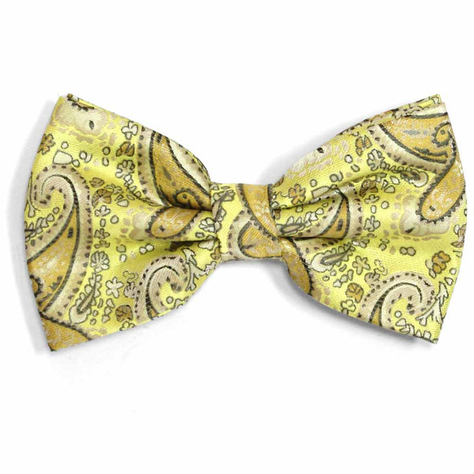 Daffodil Yellow Spencer Paisley Bow Tie